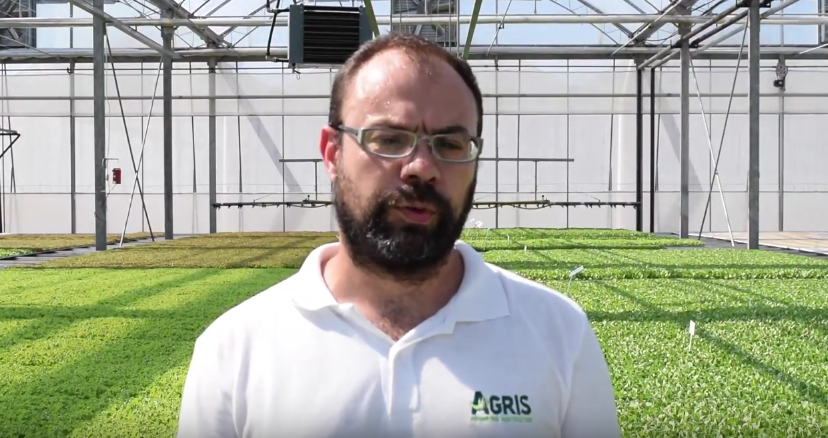 How Agris benefited from INNO-4-AGRIFOOD